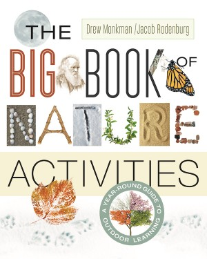 cover of The Big Book of Nature and Activities