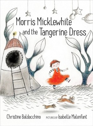 Book cover for Morris Micklewhite and the Tangerine Dress