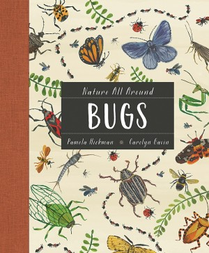 Cover of Nature All Around: Bugs