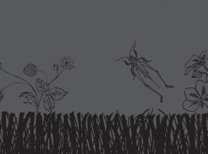 black and grey illustration of grasshopper and plants