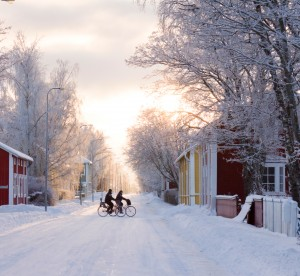 people riding their bikes on a snowy street