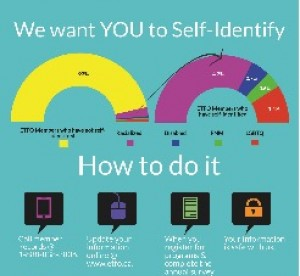 Self identification infographic